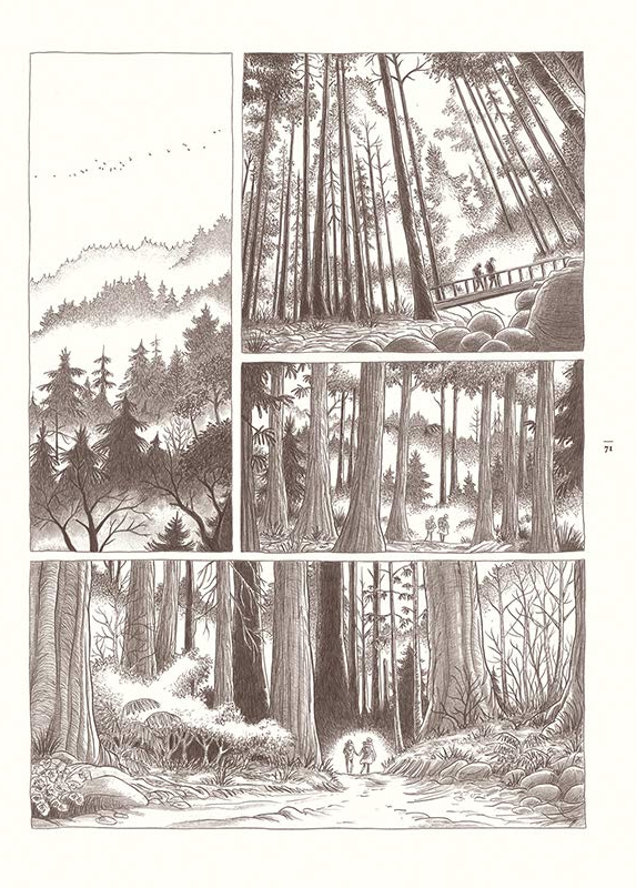 Dans la forêt, planche de l'album © Sarbacane / Lomig