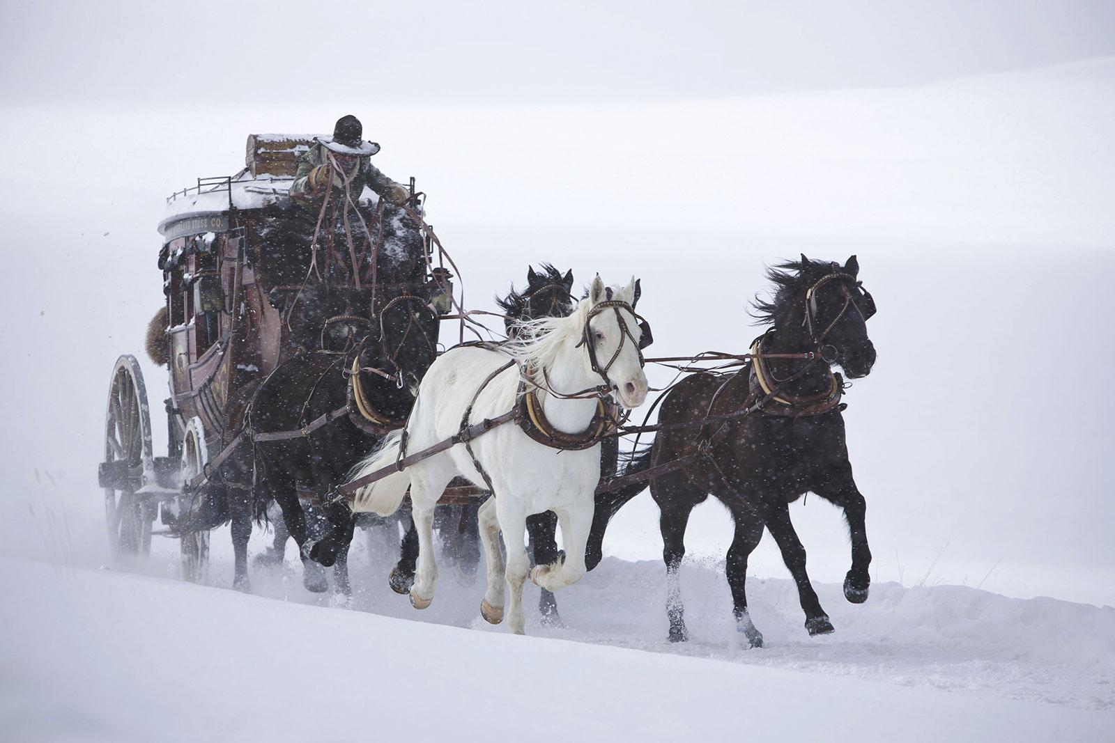 les huit salopards, image du film